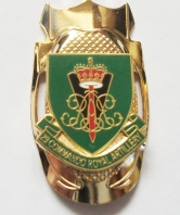 29 Commando Royal Artillery Shield